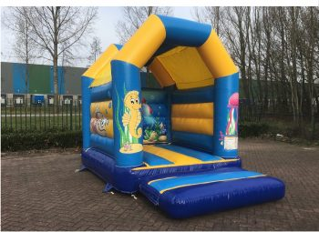 Bouncer Mini Seaworld with roof for sale