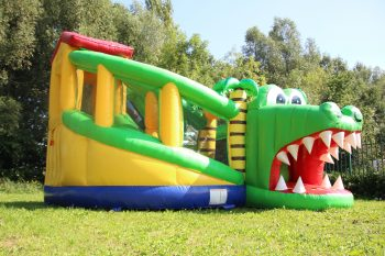 Buy bouncer multiplay XL Crocodile