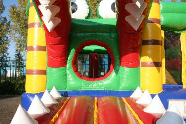 Multiplay bouncy castle for sale