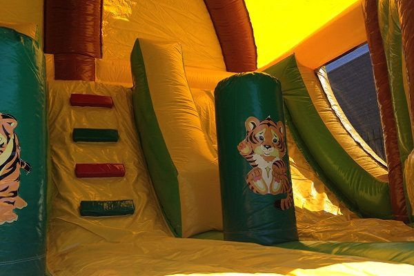 Jungle theme bouncer tiger and slide