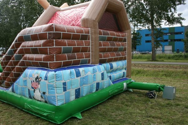 Multifun with slide and roof